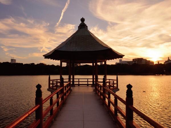 時・人・街をつなぐ。 福岡の都市と文化を 物語るシンボルへ