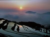 風光明媚な丘の棚田(日本の棚田百選)