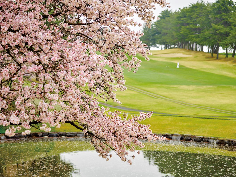 春の佳景と共に、ベストシーズンのゴルフ場へ。