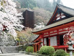 奈良・桜井市談山神社の撤下品を3名様にプレゼント