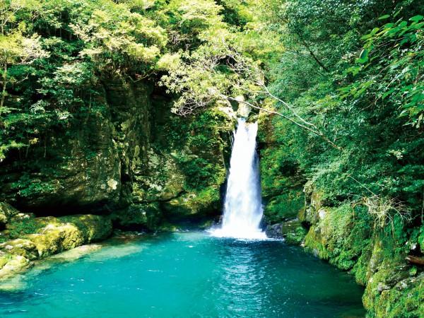 自然が生みだす<奇跡の絶景>高知県へ。