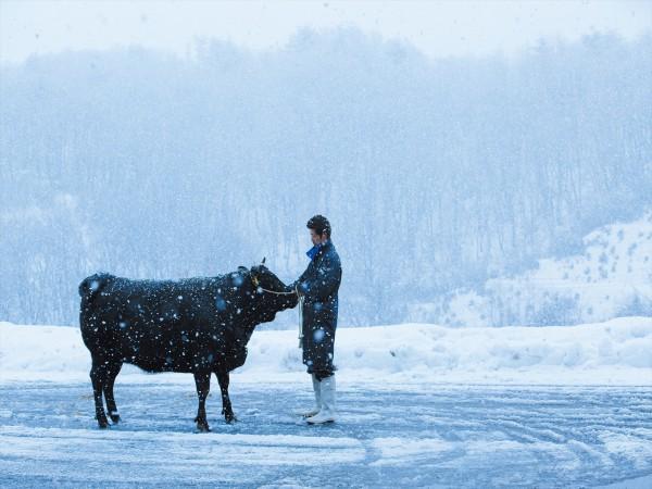 今冬のビッグニュース。幻の「尾花沢牛」、来月から市内の飲食店で提供開始。