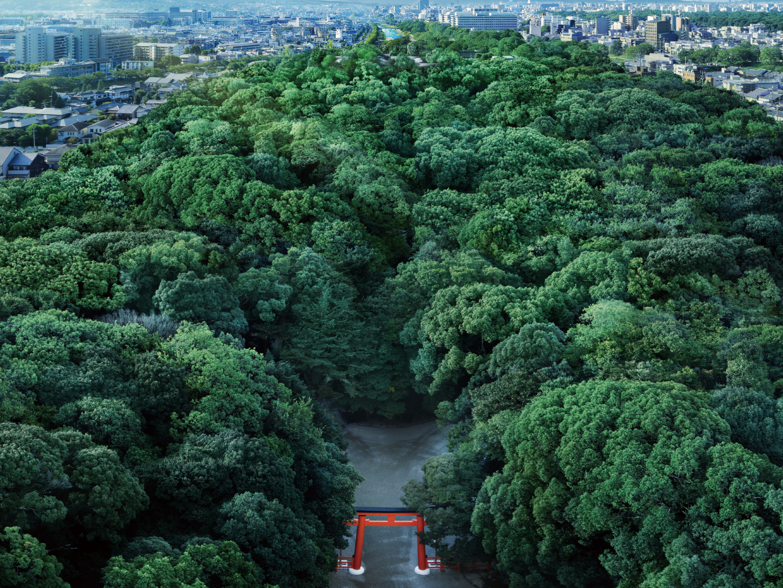 世界遺産・下鴨神社の鎮守の森。二千年の歴史に抱かれる邸宅。
