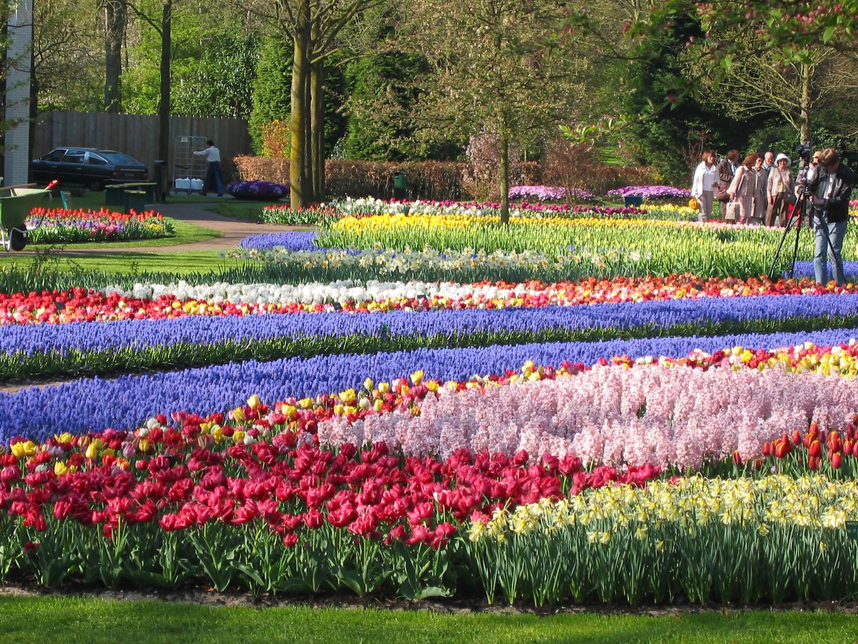 西ヨーロッパ3国の春はこれほどまでに美しい