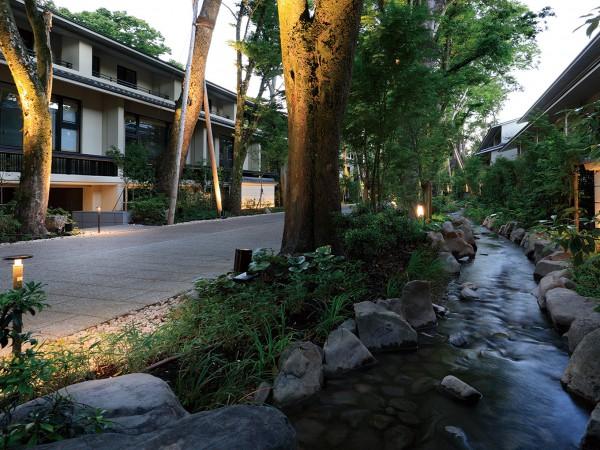 京都「下鴨神社」の森に抱かれ凛然と佇む邸宅、ついに完成。