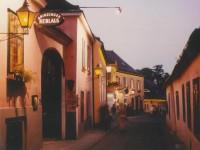 ホイリゲでプロースト!旅の途中・グリンツィング村の想い出【ワイン航海日誌】