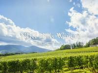 """ご購入の方に""""NIKI Hills Wineryワイナリーツアー""""をプレゼント!"""