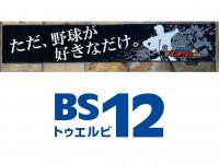 BS12プロ野球特製「マフラータオル」を3名様にプレゼント!